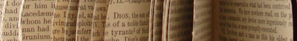 Decorative element showing book pages